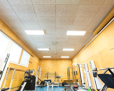 Envirocoustic™ Wood Wool by Acoustical Surfaces is shown here in a gym with subdued color.