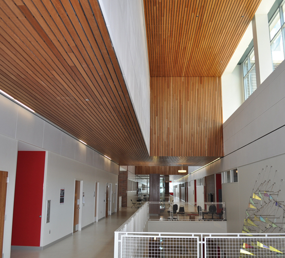 Linear wood ceilings by Acoustical Surfaces, based in Chaska, Minnesota.