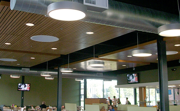 ASI Architectural Grille Ceilings are the perfect slotted look to provide acoustical sound absorption. ASI Architectural is a brand of Acoustical Surfaces.
