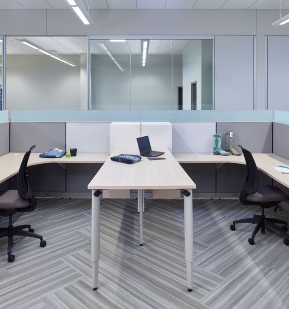 Low workspace panels and clear glass wall creates a open environment at Buckle, by Allsteel.