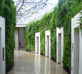 ambius longwood gardens interior hallway