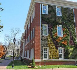 ambius queens university green wall exterior