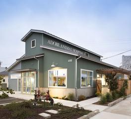Animal arts adobe animal hospital 2