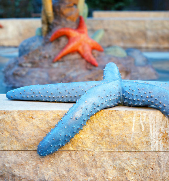 Vibrant and realistic starfish sculpture.