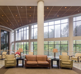 ASI Arch Cube wood ceiling panels Lobby
