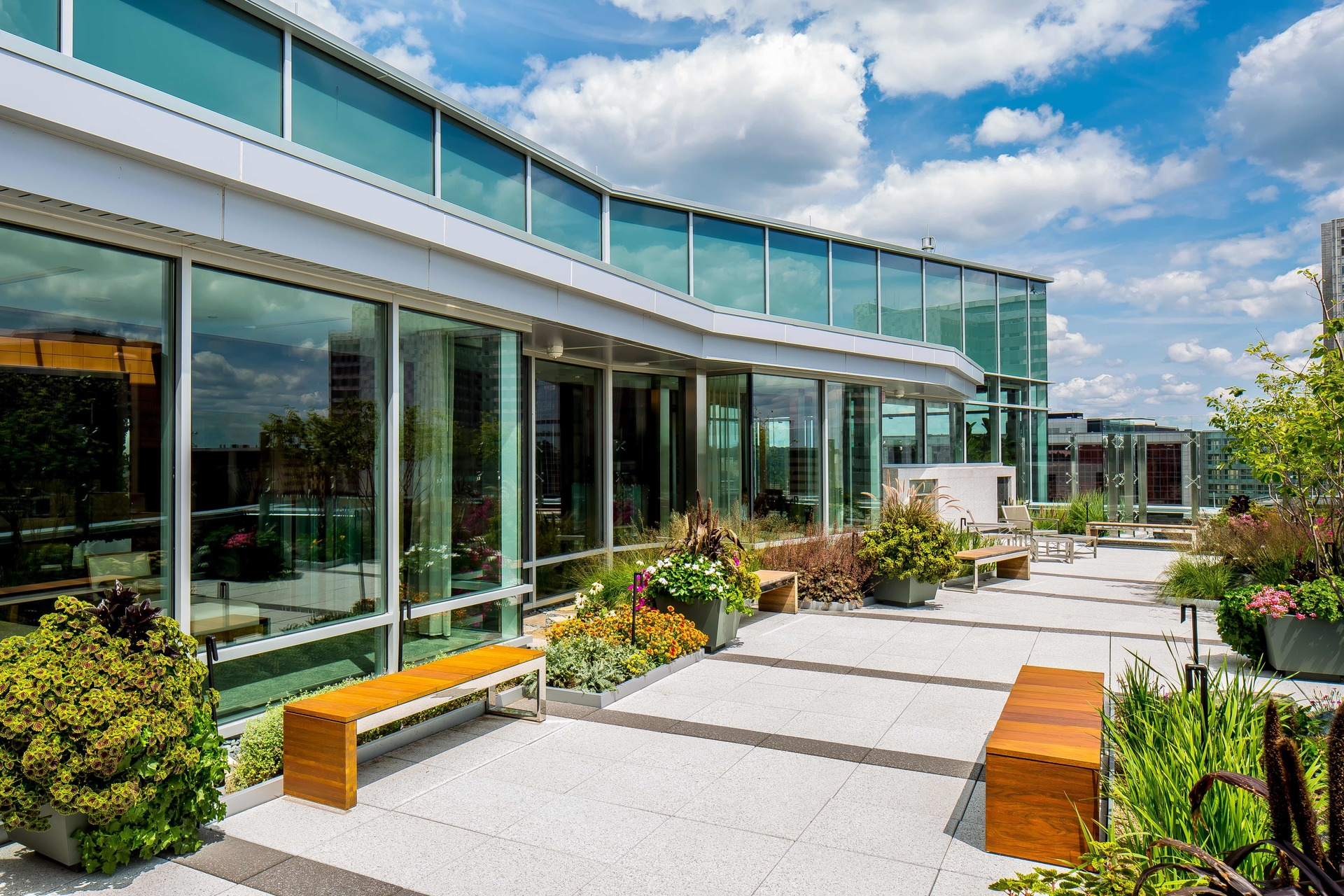 Bright and colorful plants located on the rooftop of the Dan Abraham Healthy Living Center in Rochester, Minnesota.