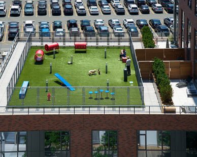 The 345 Harrison apartment features an expansive rooftop dog park. Bison Versadjust Pedestals were used to support the concrete pavers and artificial turf that helped create the dog park.