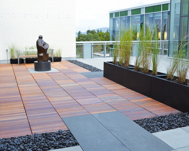 Bison Versadjust Pedestals were used on the rooftop of the Faculty of Law Library at the University of British Columbia because they are durable enough to not only hold up a variety of surface materials but also the harsh Canadian winters.