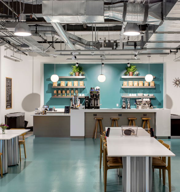 Durat 030 for coffee bar countertops