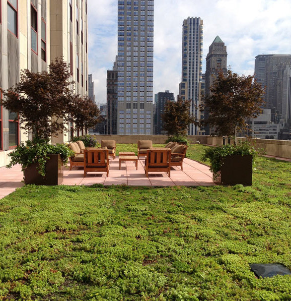 "Chatfield Green Roofing completed this project on the Empire State building located in New York City with over 6,900 SF of the XF 301 + 3/4"" XT Mat System."