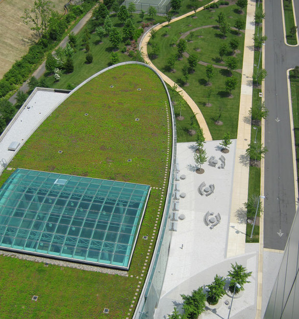 "Chatfield Green Roofing completed this project for the Capital One Headquarters located in McLean, Virgiia showcases 15,000 SF of the XF 301 + 3/4"" XT Mat system"