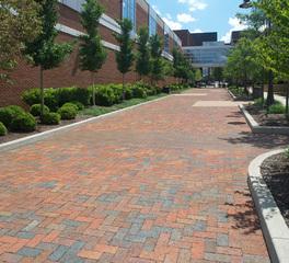 Clay Brick Pavers   Brick Walkway   The Belden Brick Company