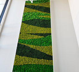 Color Block Preserved Moss Panel