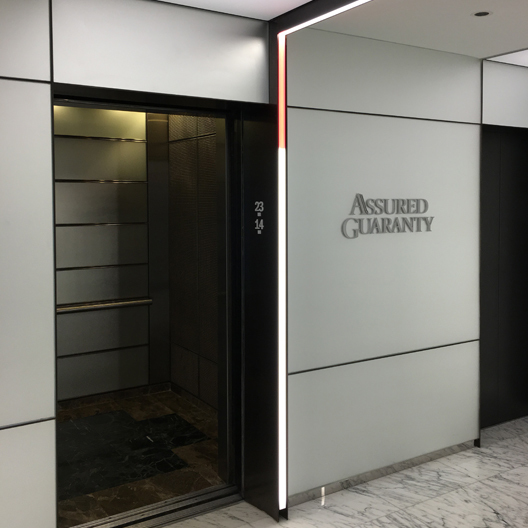 This dual colored elevator entry lighting was engineered by Dado Lighting.