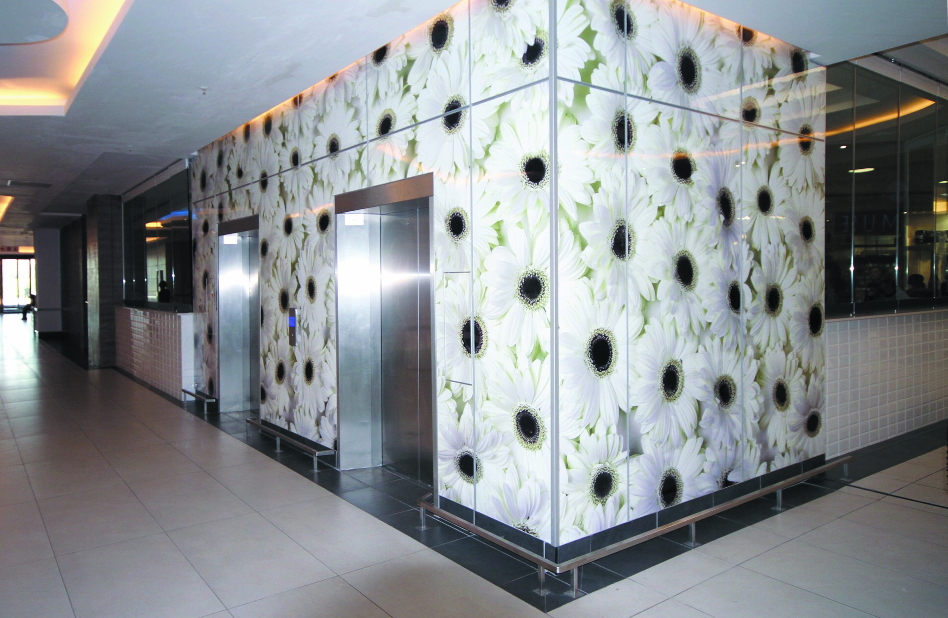 Graphic wall designs are a great way to make a bold statement in your establishment.  Here they are making a statement by the elevators.  Fusion can elevate your brand or personalize your home on any budget. By combining our ever-expanding line of graphics or your own artwork with our more than a dozen substrate options, you can make a unique, custom design perfect for your business or home.   You can use Fusion for such applications as wall art, divider panels, displays, and large format murals allowing you to stand out from the crowd. Your imagination is the limit!
