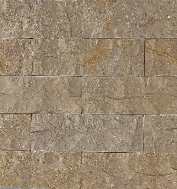 The Dijon Limestone Veneers by Earth Surfaces have a medium to light brown character to them.