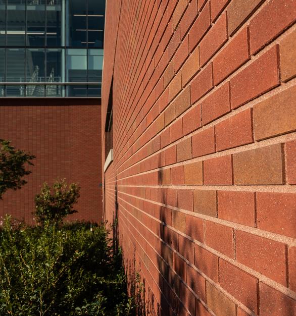 Endicott Clay Products Creighton University School of Dentistry Exterior Thin Brick