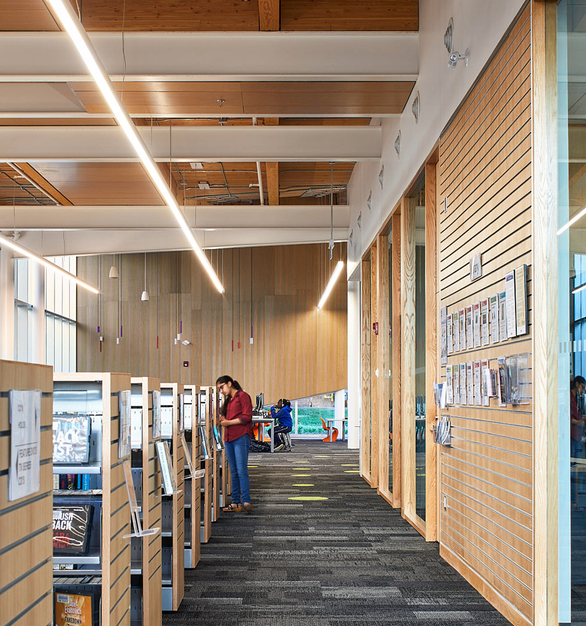 Fluxwerx Albion Library Profile Linear Lighting Luminaire Hallway Carpet