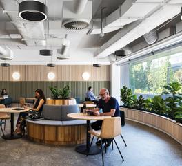 Fluxwerx Portal Pendant Gallery Office Pendant Cafe Design