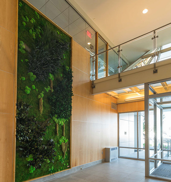 The garden wall promotes a healthy and welcoming environment at the main entrance of 100 Fifth Avenue in Waltham, Massachusetts.
