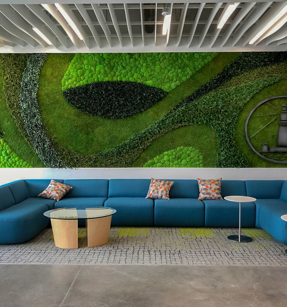 Incorporate a green wall to your lobby area for a clean, healthy environment. This particular installation features Eucalyptus, Forest, and Fern species over a Flat Moss canvas.
