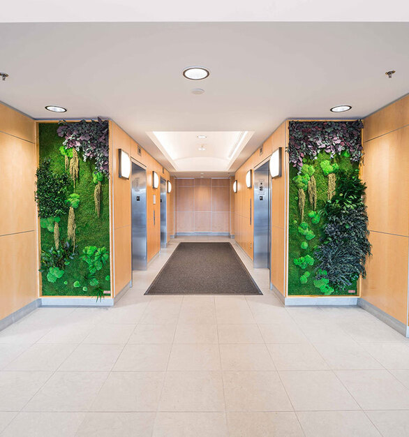 Eucalyptus, Forest, Ferns, and Flower Foliage species over a Flat Moss canvas complements the elevator lobby at 300 Fifth Avenue.