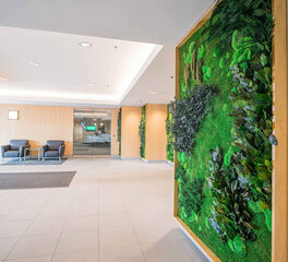 Garden on the Wall 300 Fifth Avenue Lobby Green Wall With Foliage