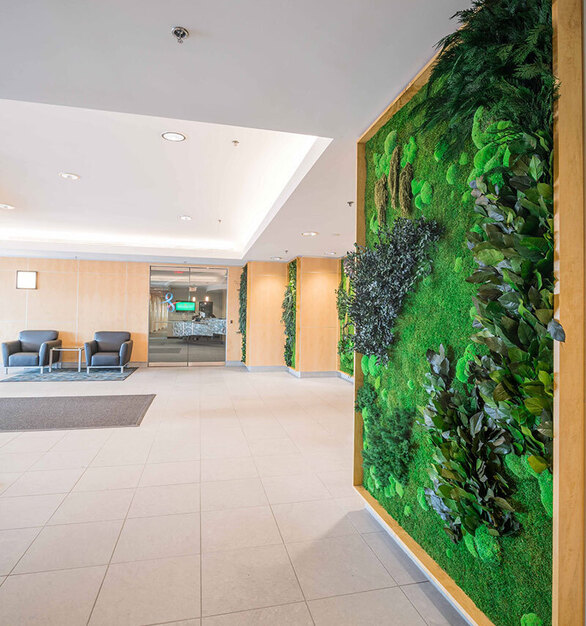 The benefits of garden walls include bringing nature indoors and providing a healthy environment for all building occupants.