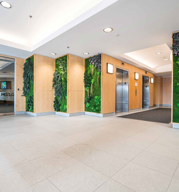 This multi-panel installation features Eucalyptus, Forest, Ferns and Flower Foliage species over a Flat Moss canvas. These preserved plants create a welcoming and healthy work environment.