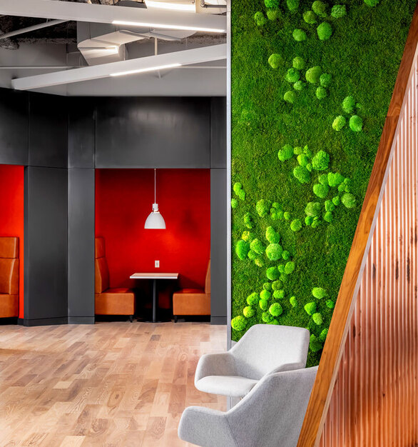 Elevate your common gathering spaces with nature walls. These preserved plants help promote a healthy living space while staying indoors. Whether it's a custom planter insert, wall or ceiling garden or a custom-shaped garden integrating a logo – the versatility of elements available for the creation garden installations allow to integrate 'Maintenance-free Nature' seamlessly into built environments.