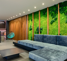Garden on the Wall Capitol at Chelsea Lobby Lounge Area Green Wall