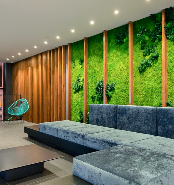 Incorporate garden walls into your lounge spaces to promote a healthy indoor atmosphere. Garden Installations created with preserved plants require no water, no misting or irrigation, no sunlight, and no soil, but retain their vibrancy, fresh-cut look and feel for nearly a decade.