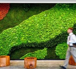 Garden On The Wall Chaminade High School Interior Garden Wall