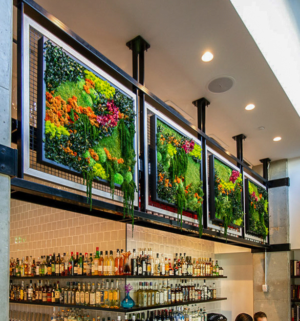 Flower Foliage, Ferns and Moss Species creates an eye-catching element to your interior cafe design. This was a multi-panel installation integrated into millwork structure.