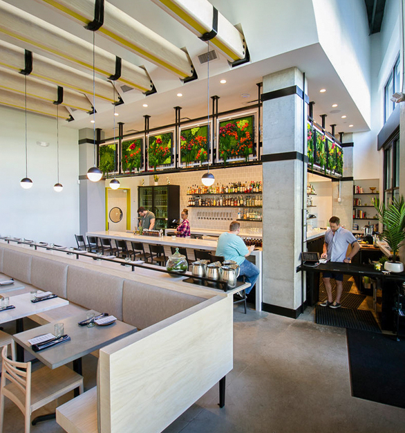 The garden walls stand out with the overall interior design of the restaurant. Elements include Flower Foliage, Ferns and Moss Species.