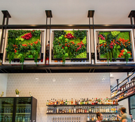 Garden on the Wall Cold Beer Restaurant Interior Bar Counter Decoration