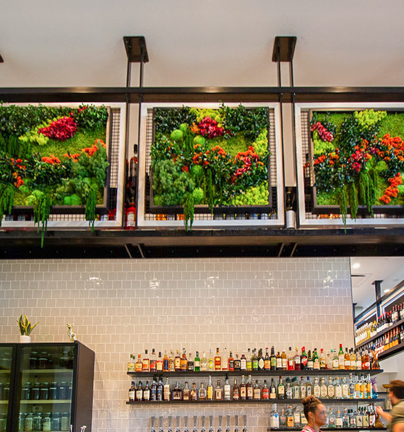 Incorporating a unique garden wall into your interior spaces promotes a healthy and positive environment for visitors and guests.