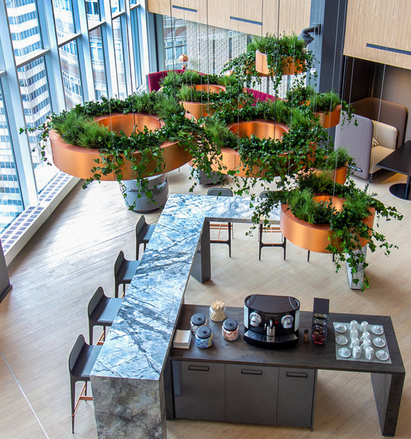 Suspended plants create a welcoming space for guests and visitors. This Deutsche Bank location features hanging Eucalyptus, Fern, and Forest Species over a Flat Moss Canvas.