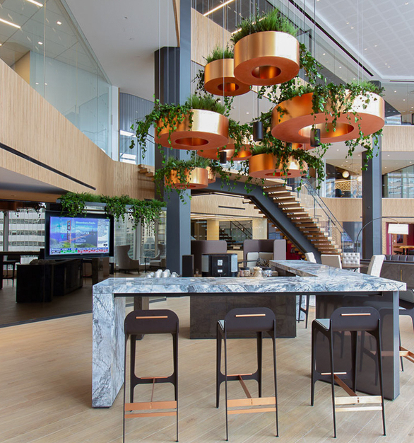 The guest area at Deutsche Bank features suspended planters with Eucalyptus, Fern, and Forest Species over a Flat Moss Canvas.