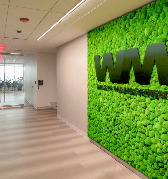 A clean and modern installation of a multi-panel installation of Moss species garden wall integrated into the recessed space created by metal framing.