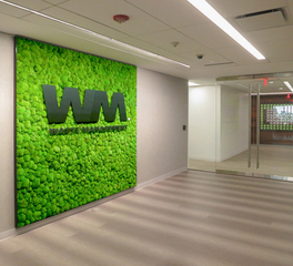 Garden on the Wall Waste Management Office Hallway Green Wall With Company Branding