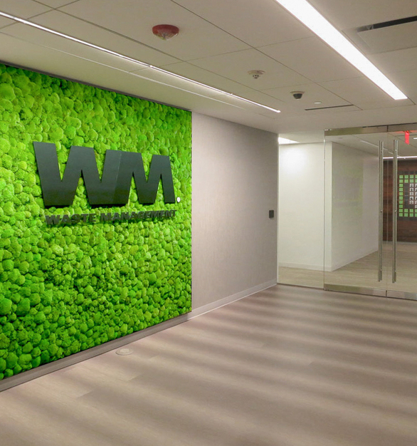 This garden wall featuring Moss species creates a unique display for your high traffic spaces. The green wall instal features a Multi-panel installation integrated into the recessed space created by metal framing.
