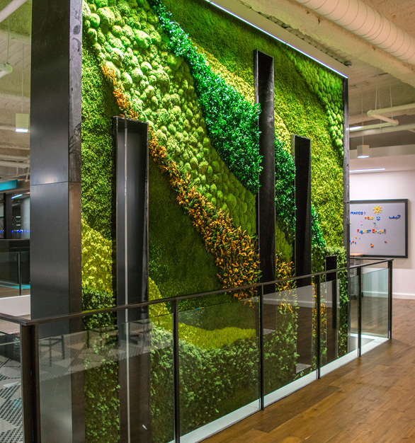 Featuring biodiversity with a portfolio of preserved mosses plus forest and flower foliage elements, the garden also has compelling cut-out windows to contribute to the openness and flow of light in the office.  Whether it's a custom planter insert, wall or ceiling garden or a custom-shaped garden integrating a logo – the versatility of elements available from Garden on the Wall for the creation garden installations allow to integrate 'Maintenance-free Nature' seamlessly into built environments.