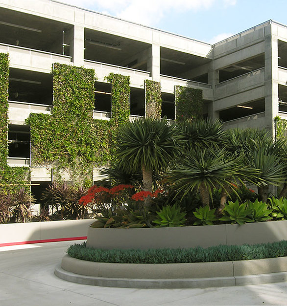 The parking structure for the offices at Horizon at Playa Visits use the beautiful green facades provided by greenscreen.