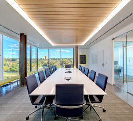 HE Williams CXC Bios Partners Conference Room Linear Lighting