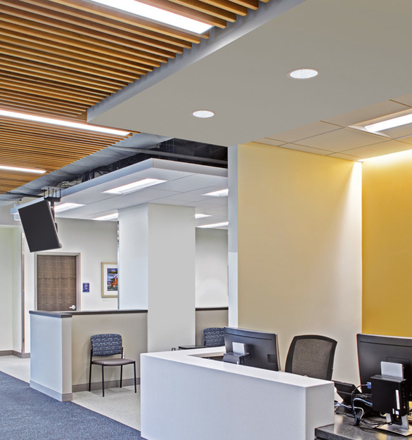 From architectural and continuous designs to traditional troffers, we deliver a comprehensive line of commercial and spec-grade LED luminaires for recessed ceiling applications.
