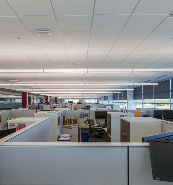 Natural light can fill the open office space through the smart shading system and expansive windows. Eye-catching pendant lights also help provide comfortable lighting throughout the building. Photography by Alex Benge.