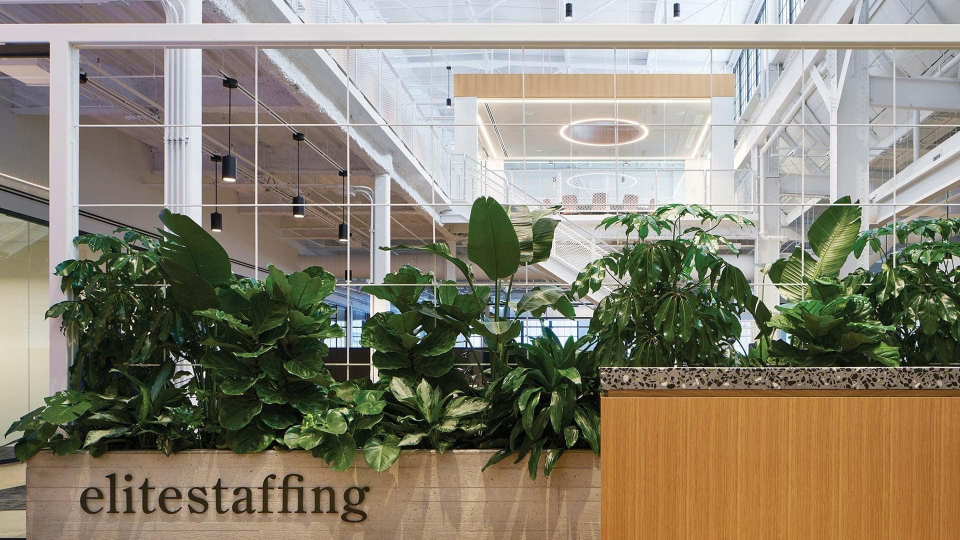 Elite Staffing Inc. is a temporary employment services and stagging agency located in Chicago, IL featuring lighting products by Acuity Brands - Gotham® Lighting andLuminis®. Project in collaboration with Charlie Greene Studio and Acuity Brands agent KSA.  Photographer:Christopher Barrett Photography