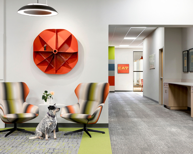 InUnison Design worked with Plunkett's Pest Control to upgrade their corporate offices. They did this with every team member's physical, emotional and psychological health and happiness (even the furry ones) as the top priority.