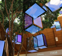 Joilet Tree in Shopping Center Atrium with Colorful LED Light Boxes